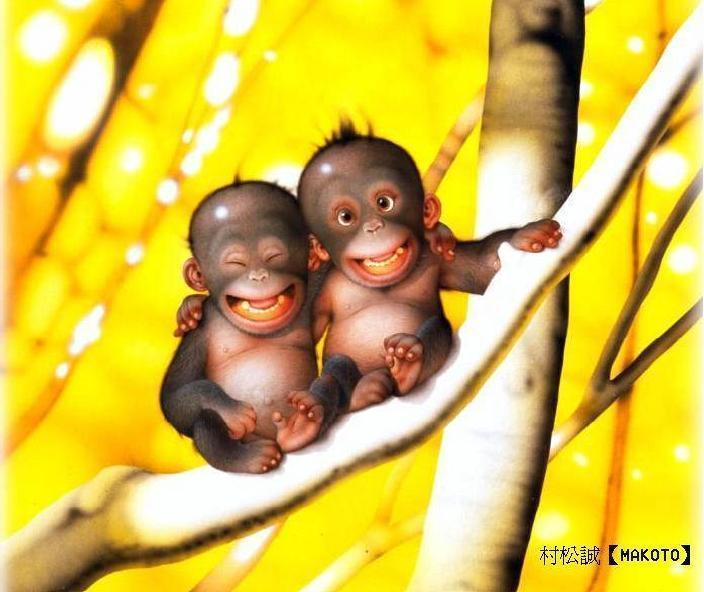 http://1fille1gars.free.fr/images/humour/funny%20monkey.jpg